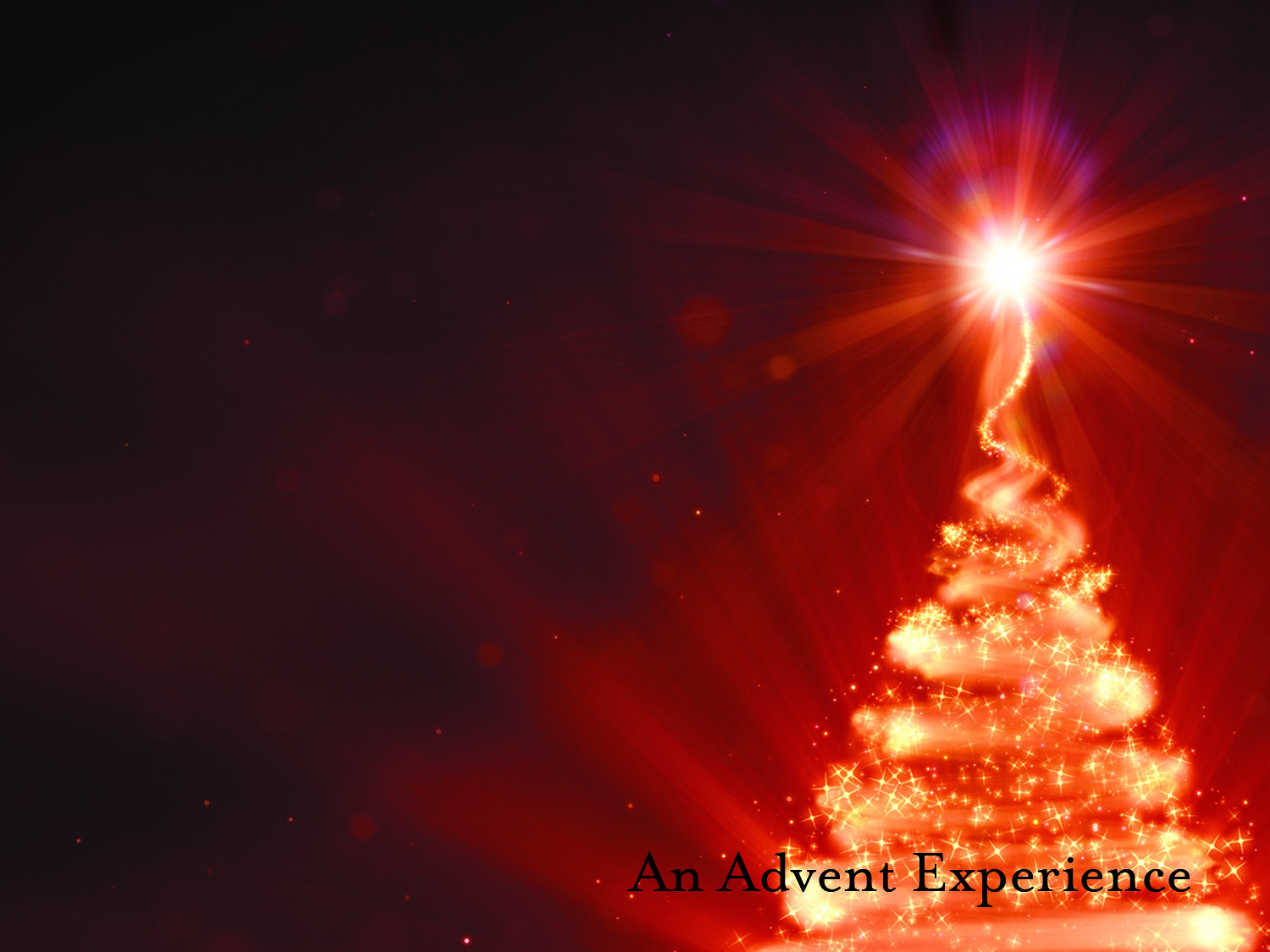 Anticipate Advent Series